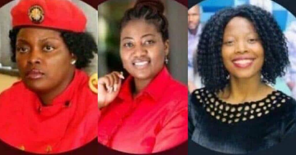 MDC-Alliance's Chimbiri, Marova summoned to stand trial for calling on Mnangagwa to step down