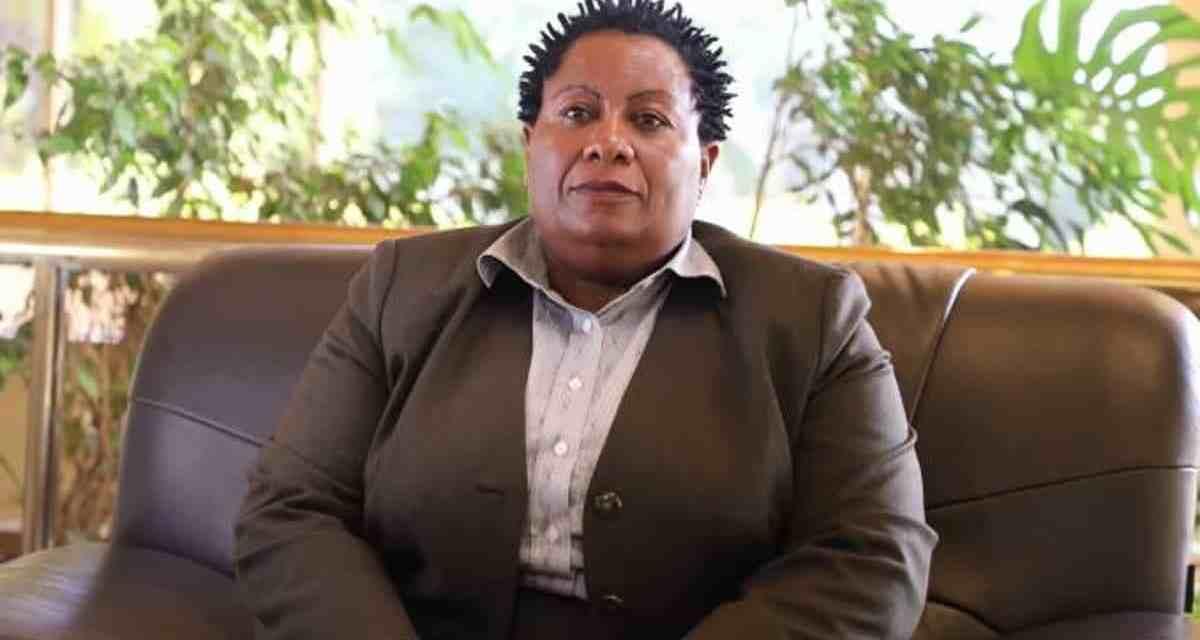 ZACC should probe NPA over delays in prosecuting graft cases- MPs
