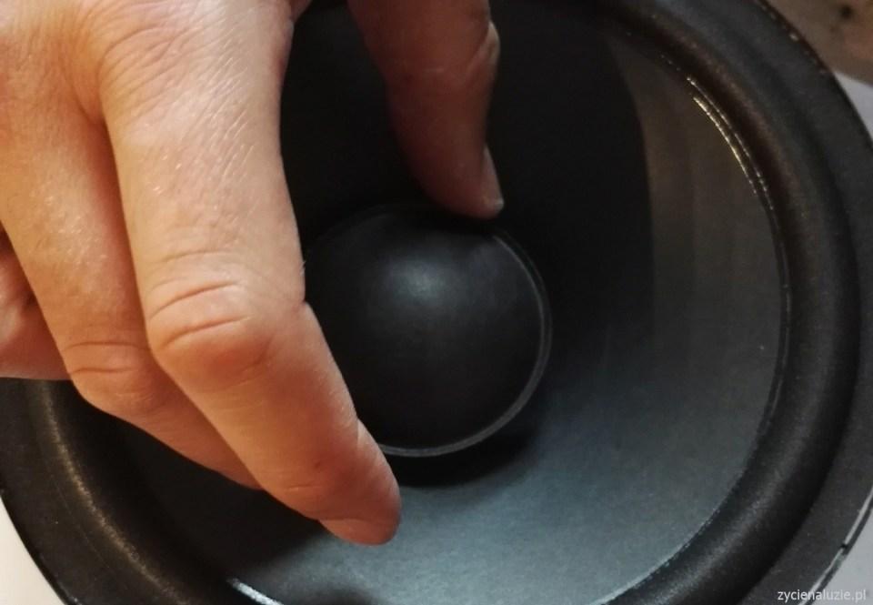 Renowacja głośników 13