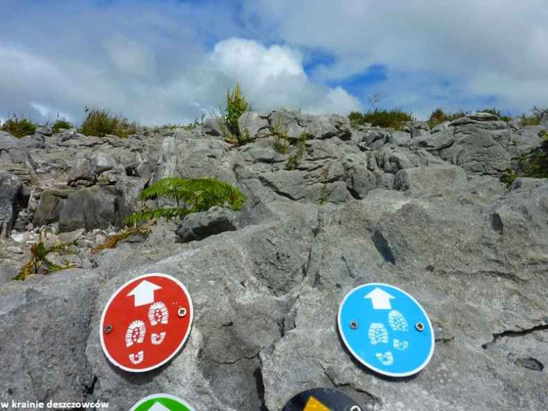 Mullaghmore Loop, Burren (11)