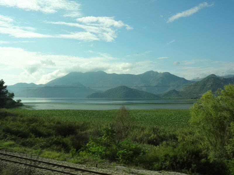Czarnogóra Jezioro Szkoderskie