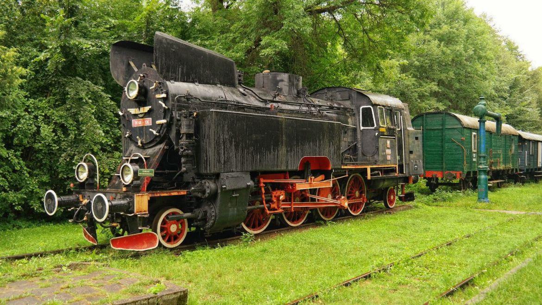 Białowieża Stacja Białowieża Towarowa pociąg