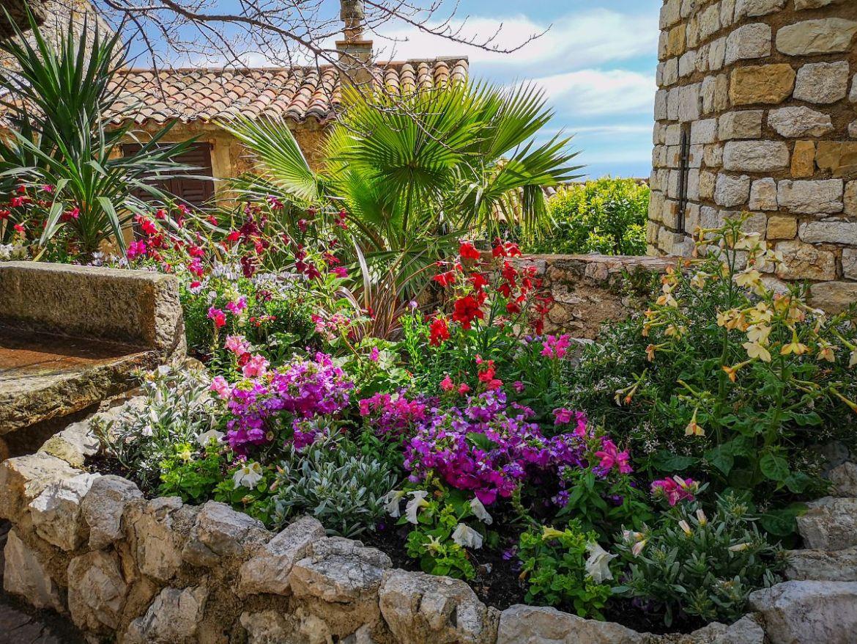 kwiaty ogród eze górne co zwiedzić na lazurowym wybrzeżu