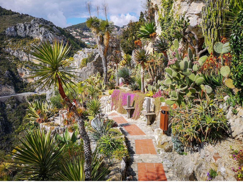 park Ogród Egzotyczny Jardin exotique d'Èze lazurowe wybrzeże panorama sukulenty kaktusy ścieżka rośliny