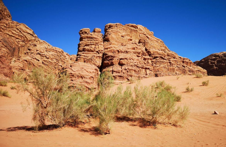 Wadi rum co zwiedzić i co zobaczyć koszty pustynia nocleg wycieczki po wadi rum.jpg