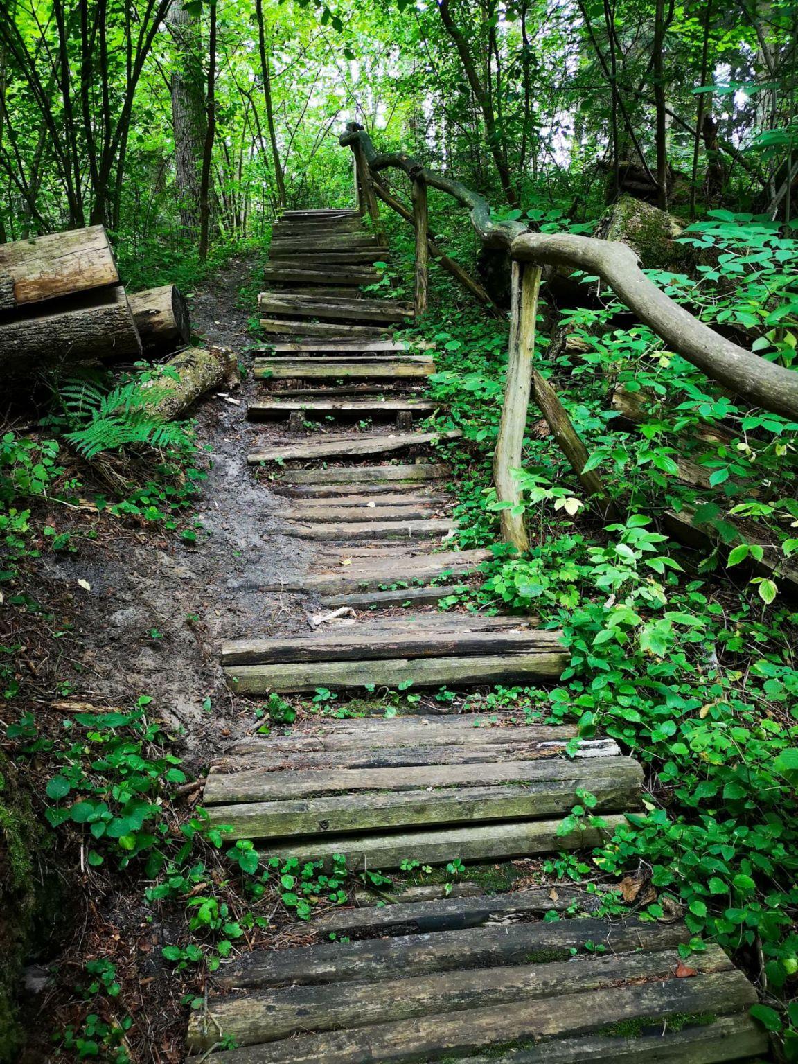 Czartowe Pole susiec roztocze na weekend co zwiedzić rezerwat schody