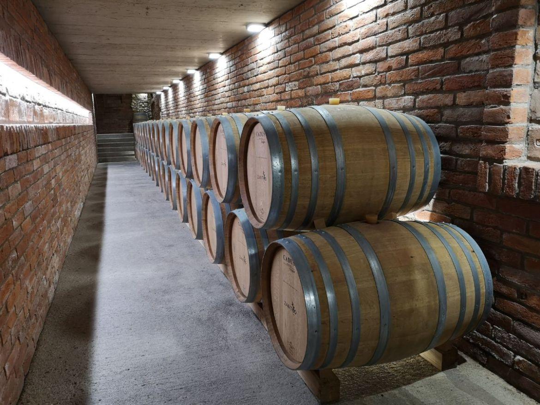 winnica horak czechy morawy poludniowe wino
