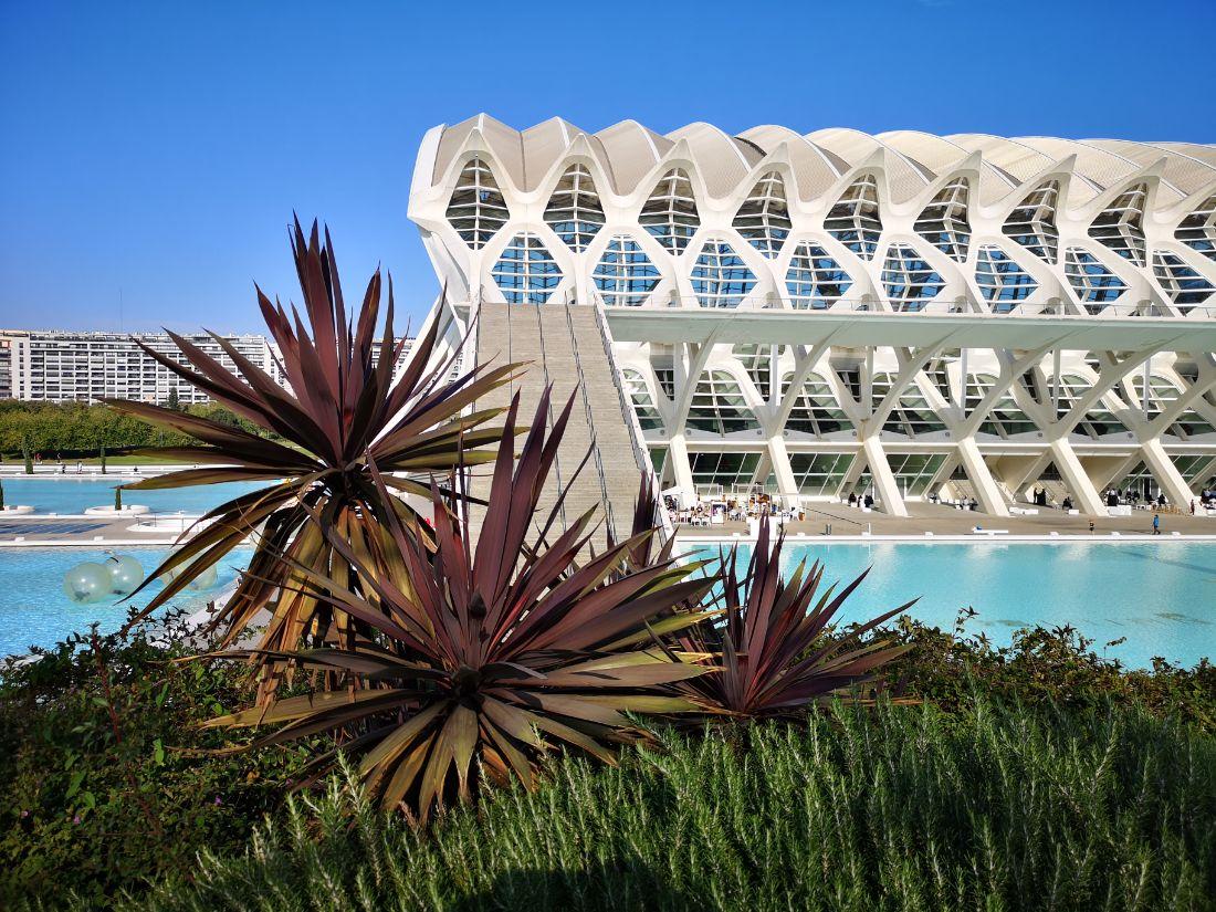 ciudad de las artes walencja zwiedzanie El Palau de les Arts Reina Sofía