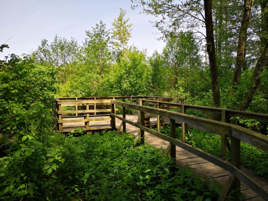 ścieżka przyrodnicza bobrówka lubelskie
