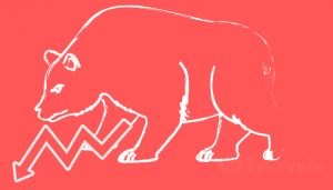 The bears are in; Crypto Market swims in Red Lights