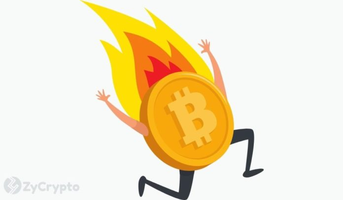 Experts Weigh In On The Possibility Of Bitcoin Facing A Monumental Crash This Year