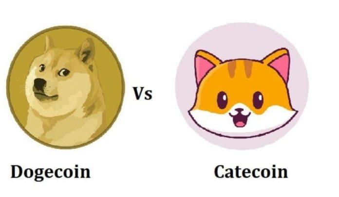 Dogecoin vs Catecoin - a meme coin with decentralized meme platform