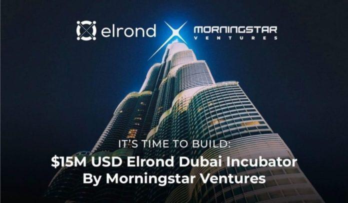 Morningstar Ventures Announces $15M Investment Fund Towards Elrond Ecosystem