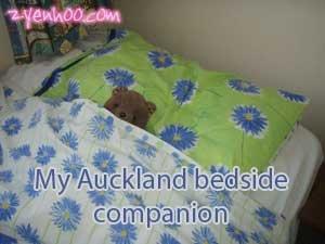 My Auckland bedside companion