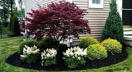 Cheap Front Yard Landscaping Ideas That Will Inspire 12