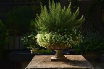 Cozy Decorative Garden Planters Design Ideas 28
