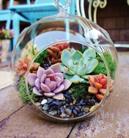 Awesome Succulent Garden Ideas For 2018 04