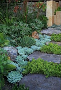 Awesome Succulent Garden Ideas For 2018 08