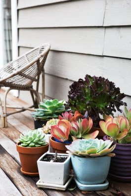 Awesome Succulent Garden Ideas For 2018 13