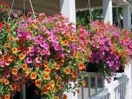 Awesome Balcony Tips For Perfect Balcony Ideas 23