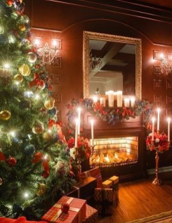 Elegant Christmas Lights Decor For Backyard Ideas 29