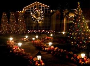 Extraordinary Outdoor Light Christmas Ideas 41