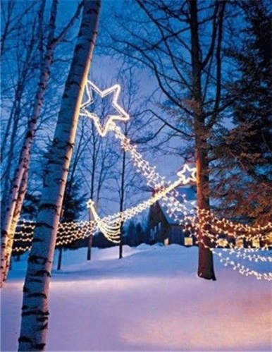 Marvelous Outdoor Lights Ideas For Christmas Decorations 39