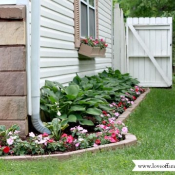 Pretty Colorful Winter Plants And Christmas For Frontyard Decoration Ideas 09