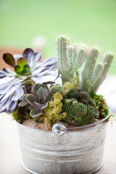 Wonderful Cactus Centerpieces Ideas20