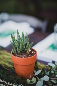Wonderful Cactus Centerpieces Ideas36