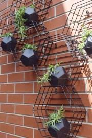 Brilliant Bonsai Plant Design Ideas For Garden36