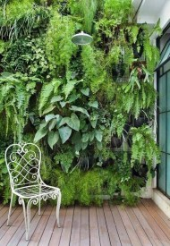 Simple Wall Plants Decorating Ideas31