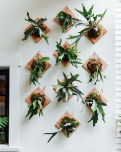 Simple Wall Plants Decorating Ideas38