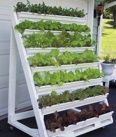 Brilliant Vertical Gardening Ideas04