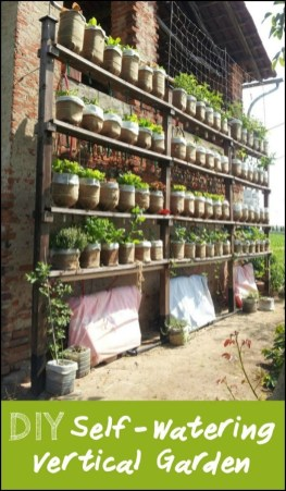 Brilliant Vertical Gardening Ideas16