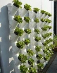 Brilliant Vertical Gardening Ideas38