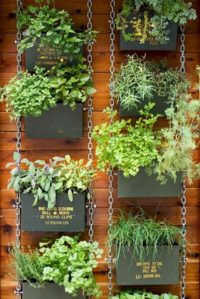 Brilliant Vertical Gardening Ideas44