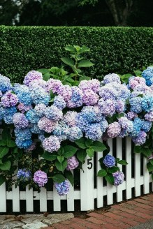 Pretty Floral Garden Decor Ideas26