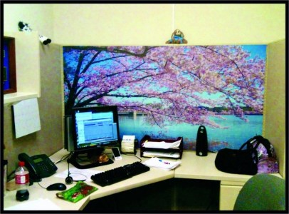 Creative Diy Cubicle Decor Ideas For Working Space 17