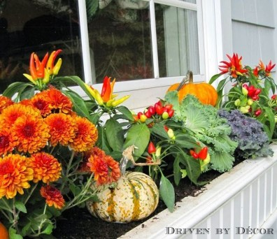 Lovely Window Design Ideas With Vase Flower Ornament39