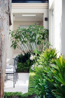 Superb Indoor Garden Designs Ideas For Home02