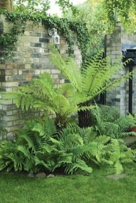 Superb Indoor Garden Designs Ideas For Home07