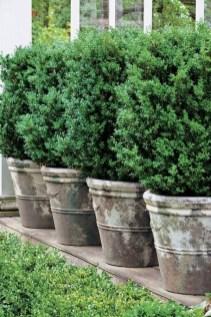 Superb Indoor Garden Designs Ideas For Home23