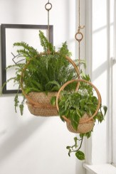 Superb Indoor Garden Designs Ideas For Home31