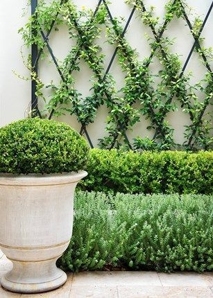 Inspiring Garden Ideas That Are Suitable For Your Home32