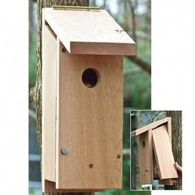 Elegant Bird House Ideas For Your Backyard Space28