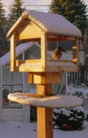 Magnificient Stand Bird House Ideas For Garden26