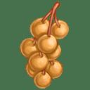 Longan Cherry