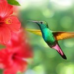 Un precioso colibri en una bonita flor de Hibisco rojo