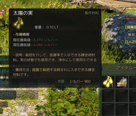 2015-07-26_202935640[410_-2